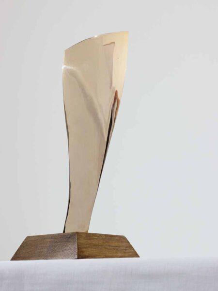 Trophée bronze l'Étrave 2