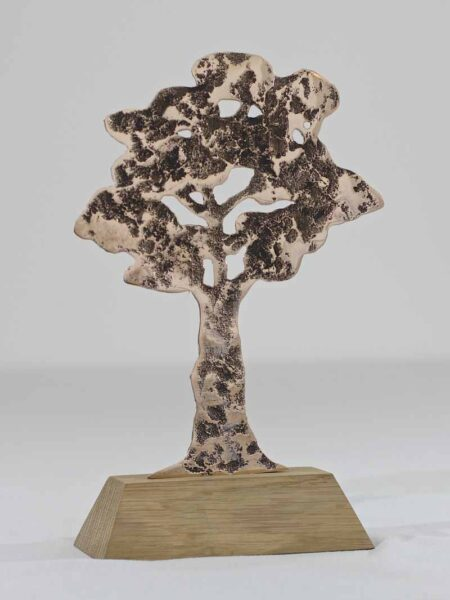 Trophée bronze écologie Kelutral 2