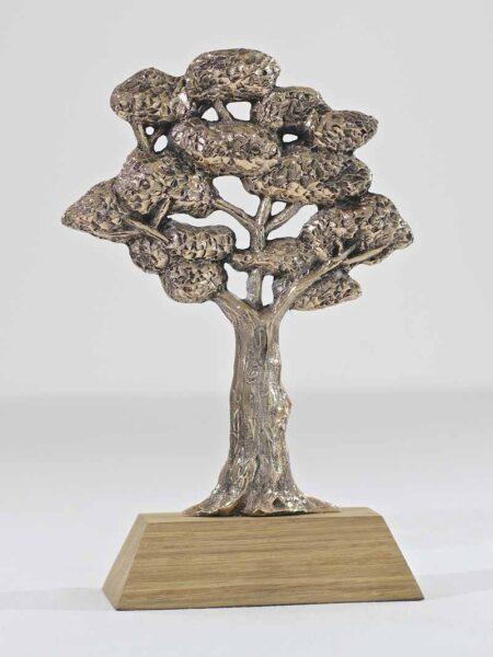 Trophée bronze écologie Kelutral 1