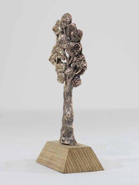 Trophée bronze écologie Kelutral 3